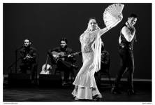 Inspiracion Flamenca by Byron Medina