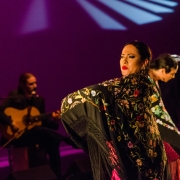 inspriacionflamenca-by-mary-nelle-brown