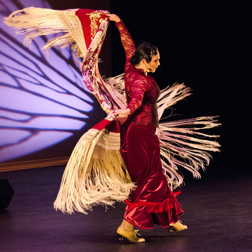 Inspiración Flamenca by Mary Nelle Brown
